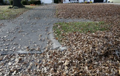 Raking leaves has become an important aspect of the changing seasons.