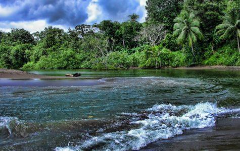 Q&A: English teacher takes trip to Costa Rica