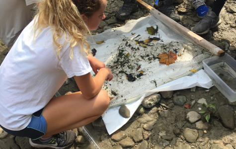 Club leader Allison Laws sifts through findings from the Chagrin River during a club outing.