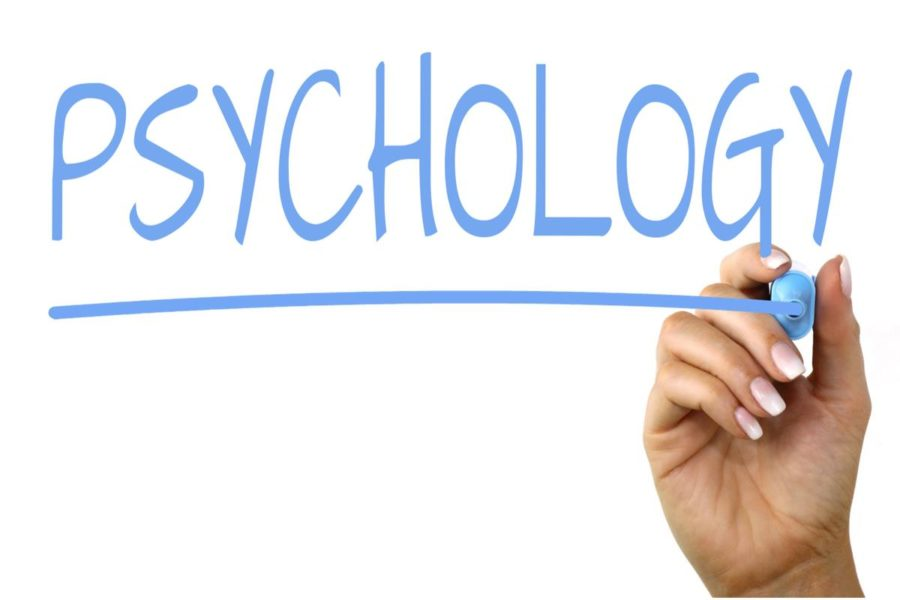 """AP Psychology students believe they're well prepared for their upcoming AP exam.  Course instructor Brittany Pumphrey said, """"I am super proud of all my students."""""""